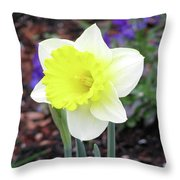 Dallas Daffodils 20 Throw Pillow