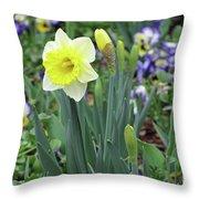 Dallas Daffodils 63 Throw Pillow