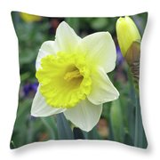 Dallas Daffodils 64 Throw Pillow