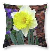 Dallas Daffodils 71 Throw Pillow