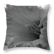 Dallas Daffodils 74 Throw Pillow