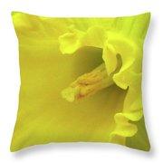 Dallas Daffodils 91 Throw Pillow