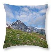 Dallas Peak Throw Pillow