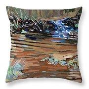 Dam Beavers Throw Pillow by Phil Chadwick