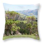 Damaged Nature Throw Pillow