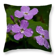 Dame's Rocket Raindrops#1 Throw Pillow
