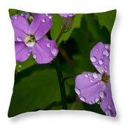 Dame's Rocket Raindrops#2 Throw Pillow
