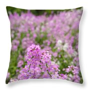 Dame's Rocket Wildflowers And Oak Tree Throw Pillow