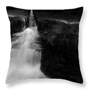 Dammgraben - Dyke Ditch Throw Pillow