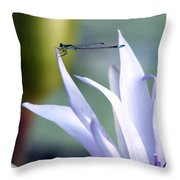 Damsel Daintiness Throw Pillow
