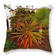 Dana Point Garden  Throw Pillow