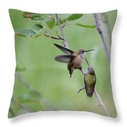 Dance Of The Calliopes Throw Pillow