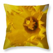 Dance Of The Daffodil Throw Pillow
