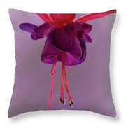 Dance Of The Fuschia Throw Pillow
