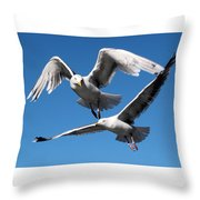 Aerial Dance Of The Seagulls Throw Pillow