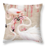 Dancing Beak To Beak Throw Pillow