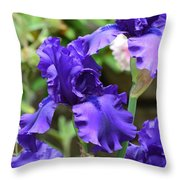 Dancing Blue Irises Throw Pillow