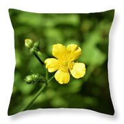 Dancing Daisy Throw Pillow