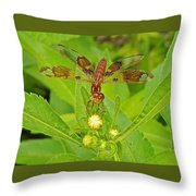 Dancing Dragonfly Throw Pillow