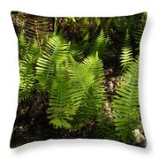 Dancing Ferns Throw Pillow