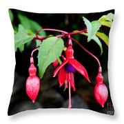 Dancing Fuchsia Throw Pillow