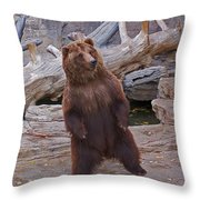 Dancing Grizzly Throw Pillow