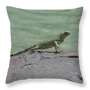 Dancing Iguana On Rocks Along The Water's Edge Throw Pillow