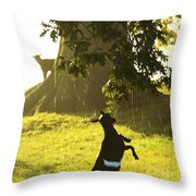 Dancing In The Rain Throw Pillow by Thomas R Fletcher