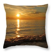 Dancing In The Sunlight 4 Throw Pillow