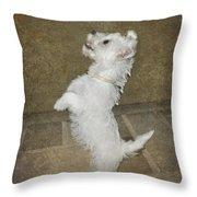 Dancing Puppy Throw Pillow