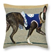 Dancing The Two Step At The Tidal Basin Throw Pillow