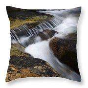Dancing Waters 6 Throw Pillow