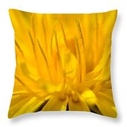 Dande 1 Throw Pillow