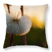 Dandelion At Sunset Throw Pillow