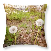 Dandelion Close To The River Throw Pillow