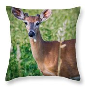 Dandelion Deer Throw Pillow