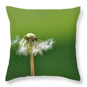 Dandelion Delight Throw Pillow