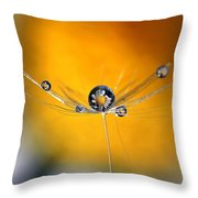 Dandelion Dew Drop Flections Throw Pillow