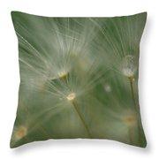 Dandelion Dew Two Throw Pillow