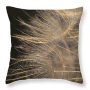Dandelion Eighty Throw Pillow