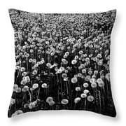 Dandelion Field In Black And White Throw Pillow