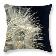Dandelion Fifty Five Throw Pillow