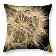 Dandelion Fifty Nine Throw Pillow