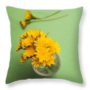Dandelion Flower Clippings Throw Pillow