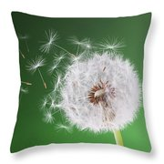 Dandelion Flying On Background Green Throw Pillow