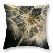 Dandelion Forty One Throw Pillow