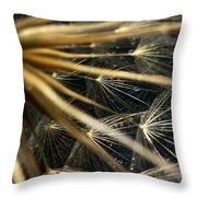 Dandelion Forty Three Throw Pillow