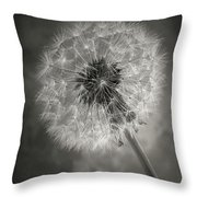 Dandelion In Black And White Throw Pillow
