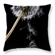 Dandelion Loosing Seeds Throw Pillow