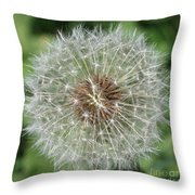 Dandelion Macro Throw Pillow